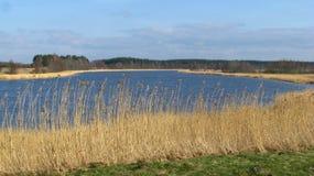 Landskap av den latvian floden Venta Royaltyfri Foto