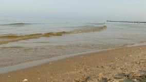 Landskap av den lugna Östersjön Fotografering för Bildbyråer