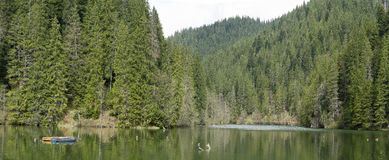 Landskap av den röda sjön Rumänien royaltyfri bild