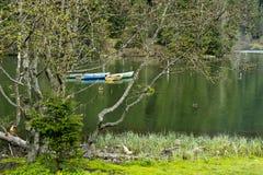 Landskap av den röda sjön Rumänien Fotografering för Bildbyråer