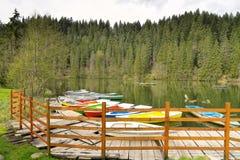 Landskap av den röda sjön Rumänien arkivbilder
