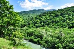 Landskap av den snabba floden Malaya Laba royaltyfria bilder