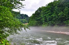 Landskap av den snabba floden Malaya Laba royaltyfri foto