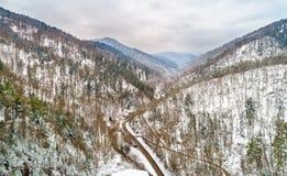 Landskap av den Strengbach dalen i de Vosges bergen nära Ribeauville alsace france Royaltyfri Bild