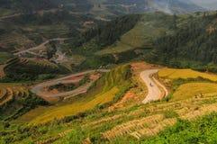 Landskap av den terrasserade risfältet i Vietnam Royaltyfri Foto