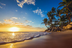 Landskap av den tropiska östranden för paradis, soluppgångskott arkivbild