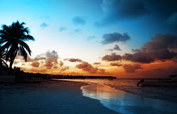 Landskap av den tropiska östranden för paradis, soluppgångskott Royaltyfria Bilder