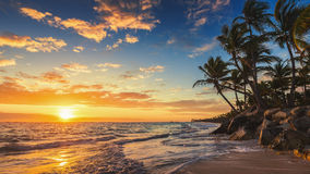 Landskap av den tropiska östranden för paradis Royaltyfri Bild