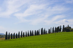 Landskap av den Val D `en Orcia Royaltyfria Foton