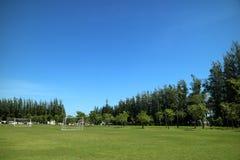 Landskap av det gröna fältet och blå himmel på horisonten arkivbilder