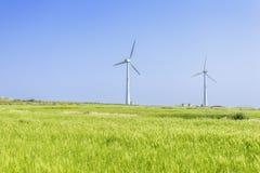 Landskap av det gröna kornfältet och vindgeneratoen Arkivfoton