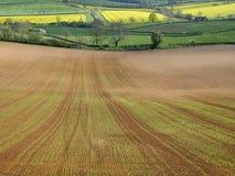 Landskap av det nyligen sådde skördfältet och bondefält i blandat bruk Royaltyfria Bilder