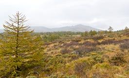 Landskap av det Taibai berget Royaltyfri Bild