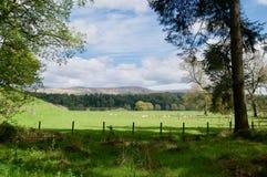 Landskap av Dumfries arkivfoto