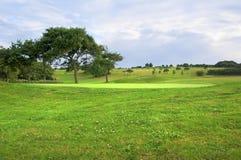 Landskap av en golfbana, en gräsplan, träd och kullar royaltyfria foton