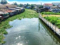 Landskap av en kanal i Thailand med att sväva vattenhyacinten Royaltyfri Bild
