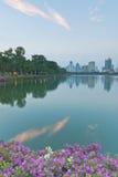Landskap av en parkera och en Bangkok cityscape i aftonen Arkivfoto