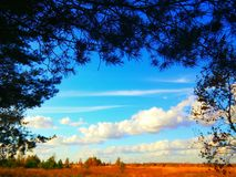 Landskap av fältet Arkivbilder