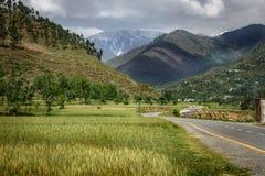 Landskap av flugsmällan Pakistan Royaltyfria Bilder