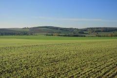 Landskap av Frankrike: Jambville Royaltyfri Fotografi
