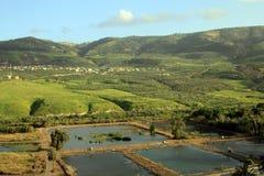 Landskap av Golan Heights Arkivfoton