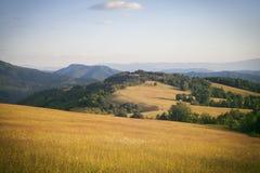 Landskap av gröna berg Royaltyfri Bild