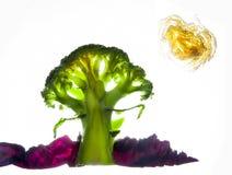 Landskap av grönsaker Arkivbild