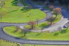 Landskap av grönt gräs och kala träd på hösten Royaltyfri Foto