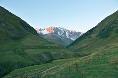 Landskap av grönt gräs och snöig berg Royaltyfri Foto