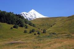 Landskap av grönt gräs och snöig berg Arkivbilder