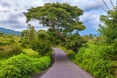 Landskap av Gunung Batur, Kintamani, Bali, Indonesien royaltyfria foton