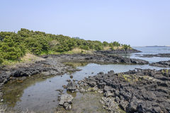 Landskap av inga Jeju Olle cours 2 Arkivfoton