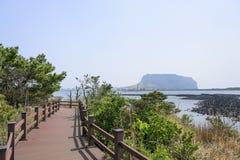 Landskap av inga Jeju Olle cours 2 Royaltyfri Foto