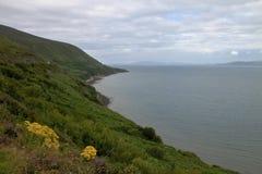 Landskap av Irland Royaltyfria Foton