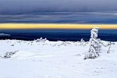 Landskap av jätten Fotografering för Bildbyråer