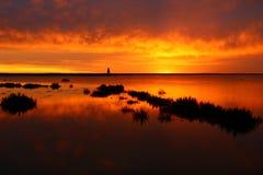 Landskap av Juyan handfatet för sjö Royaltyfri Bild