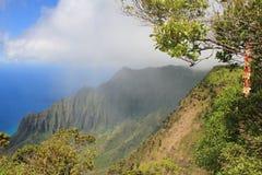 Landskap av Kauai Royaltyfri Fotografi