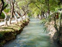 Landskap av klart vatten som flödar i kanal och träd royaltyfria foton