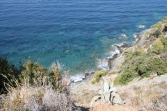 Landskap av Korsika i sommartiden Royaltyfria Bilder