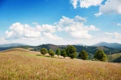 Landskap av kullar och berg Fotografering för Bildbyråer