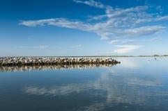 Landskap av lagun på nationalparken för Po-deltaflod, Ita Arkivfoton