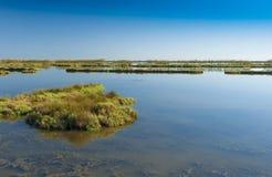 Landskap av lagun på nationalparken för Po-deltaflod, Ita Arkivbild