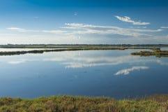 Landskap av lagun på nationalparken för Po-deltaflod, Ita Royaltyfria Foton