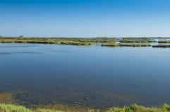 Landskap av lagun på Po-deltafloden, Italien Arkivfoton