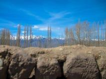Landskap av Lah ladakh, Indien Fotografering för Bildbyråer