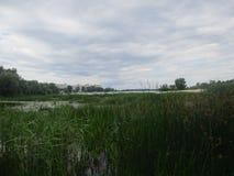 Landskap av laken royaltyfri foto