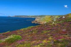 Landskap av Land's End i Cornwall England Royaltyfri Fotografi