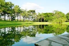 Landskap av landskapet parkerar med reflexion på sjön royaltyfria bilder