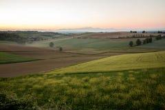 Landskap av Langhe, Piemonte, Italien royaltyfri foto