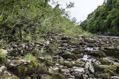 Landskap av linn av tummel från slingan arkivfoto